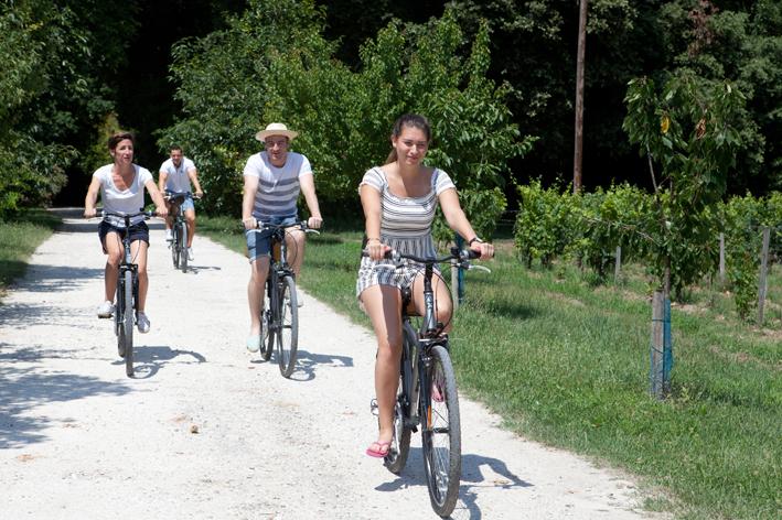 Balade à vélo dans les crus classés de Bordeaux!