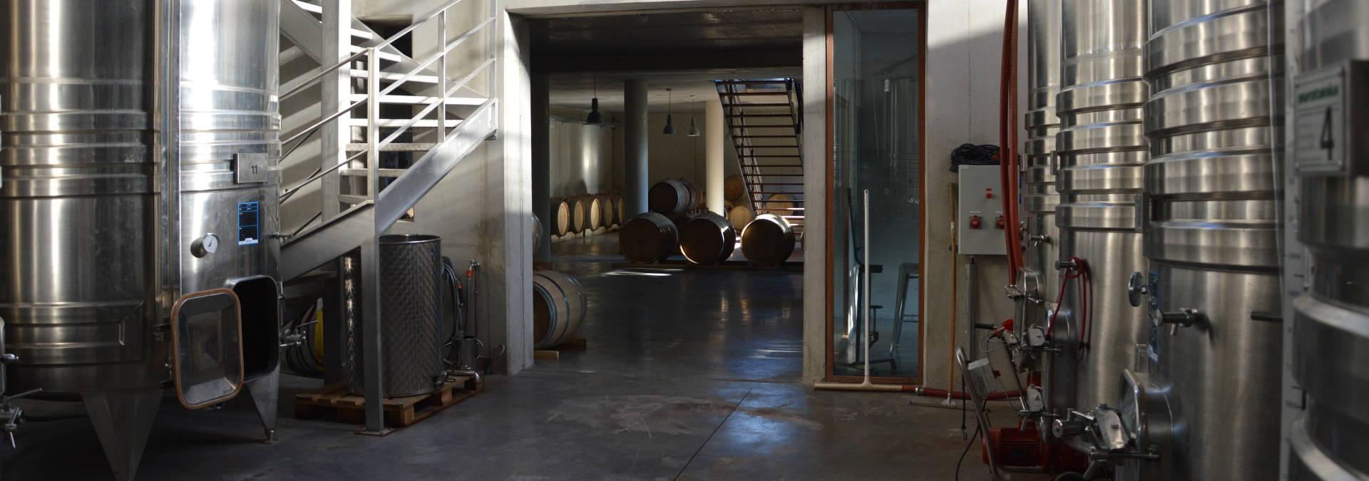Visite découverte d'un domaine viticole et dégustation de vins