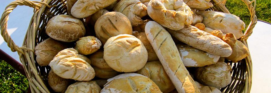 De la découverte des céréales, à la fabrication du pain
