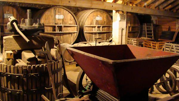Côtes de Blaye : la magie de vins de Bordeaux en biodynamie
