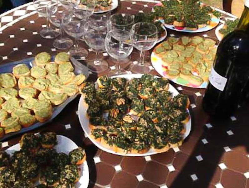 Journée cueillette et cuisine de plantes sauvages dans les Vosges