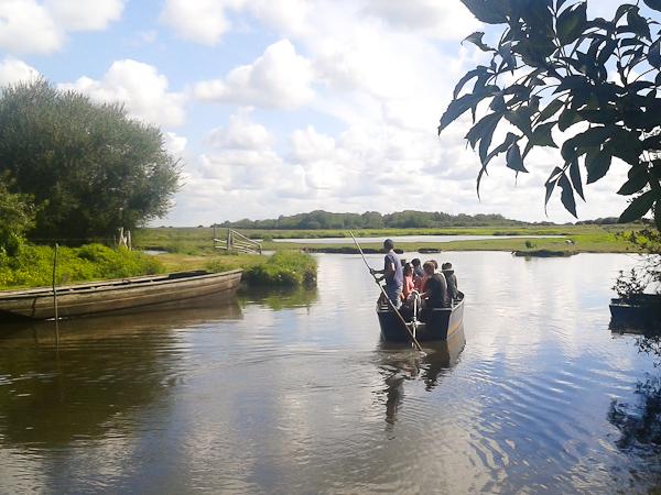 Balade guidée du parc de la Brière en barque