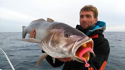 Sortie bateau en Vendée pour apprendre la pêche au leurre
