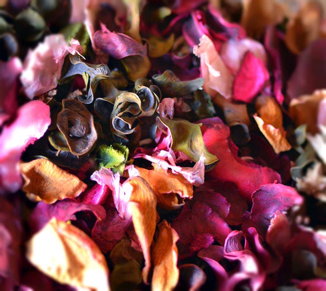 À la découverte des sens : ateliers à thèmes parfumés