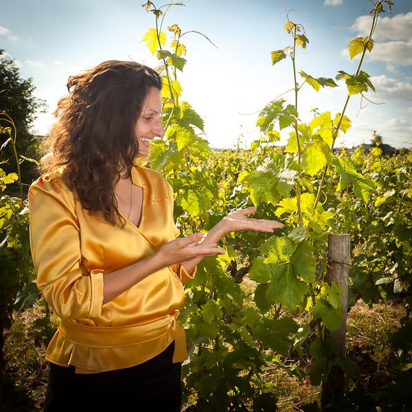 Saumur : une journée complète pour découvrir les vins de Loire