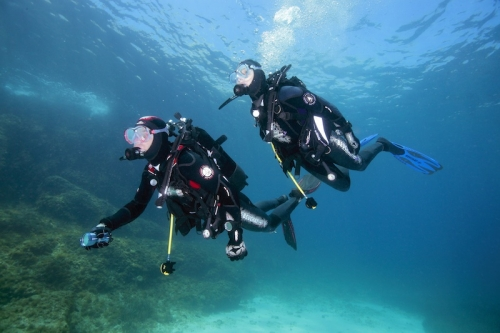 Découvrez la plongée sous-marine !