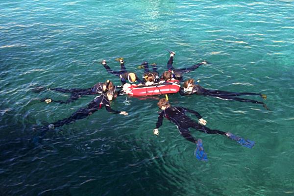 Snorkeling : à la découverte des fonds marins de Port-Cros et Porquerolles