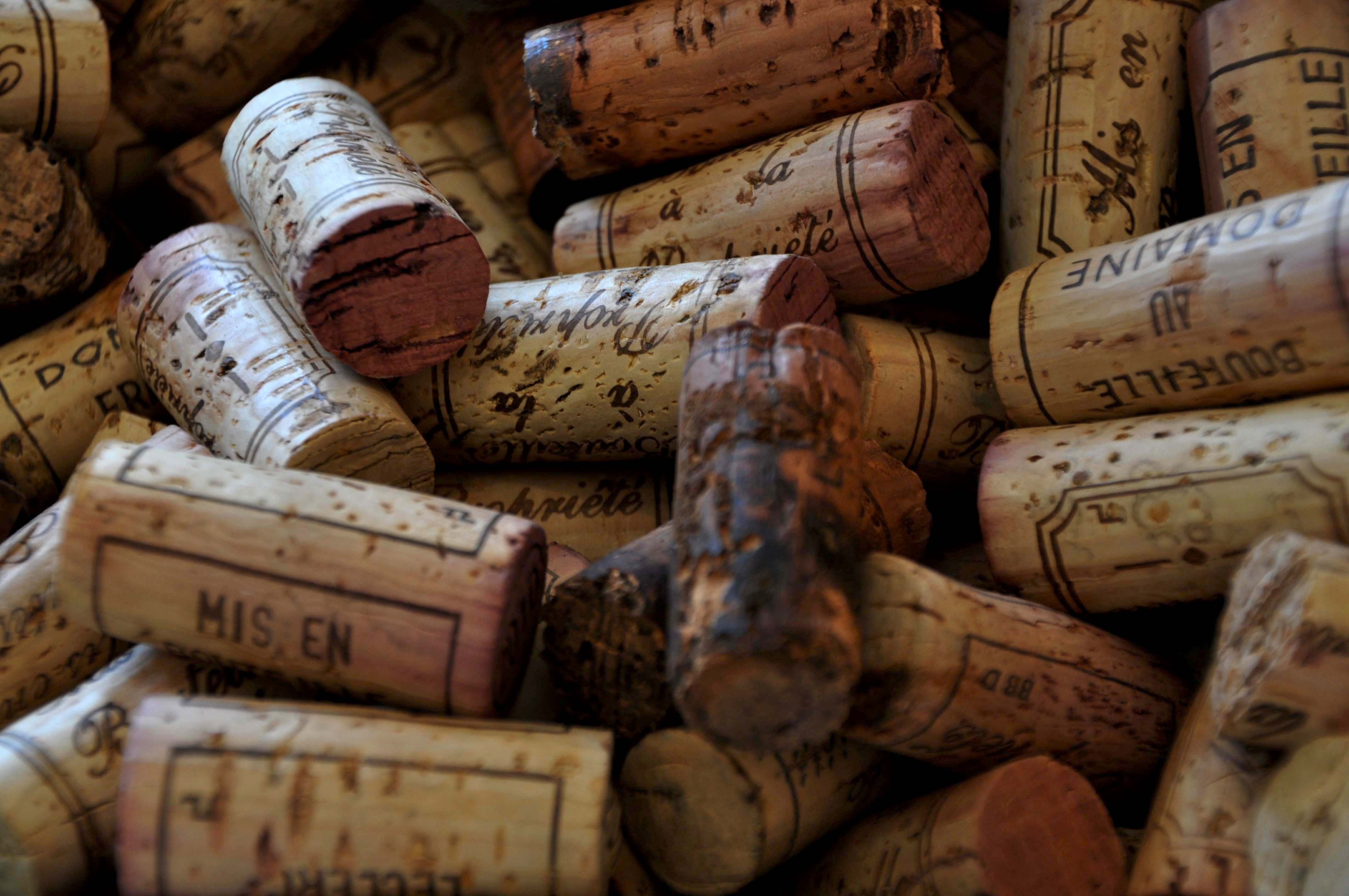 Circuit découverte des grands vins de Bourgogne et dégustation
