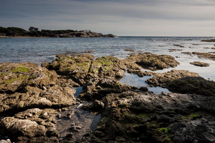 Balade photo de sensilisation à l'écologie sur l'île des Embiez