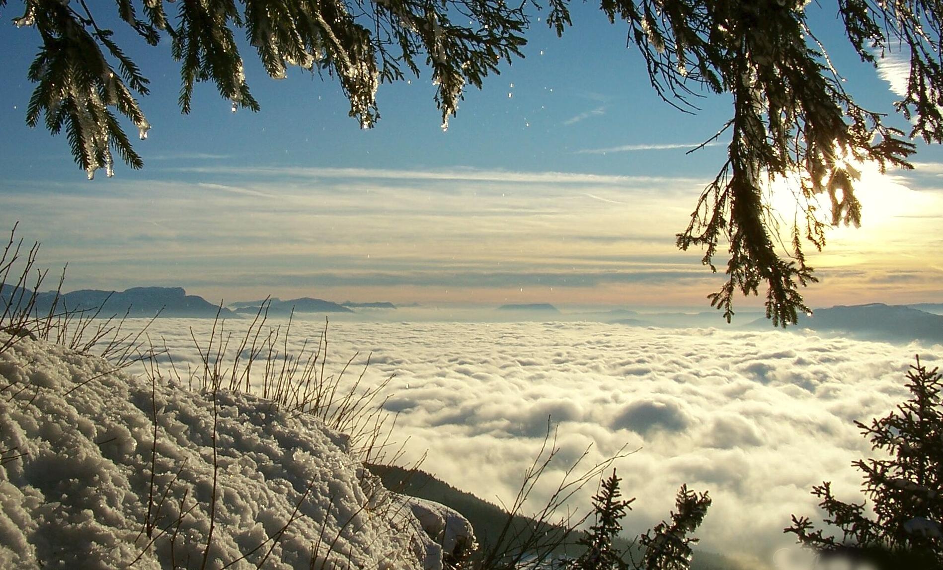 Randonnée nocturne à raquettes et dîner local, en Haute Savoie