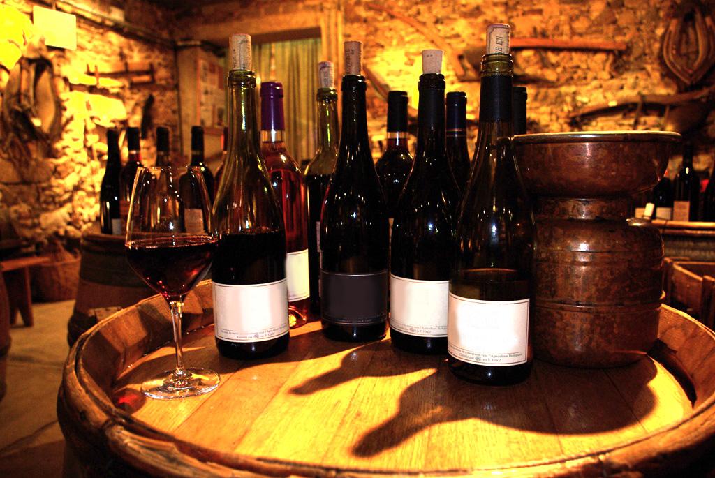Beaujolais : visite d'un vignoble, œnologie et dégustation
