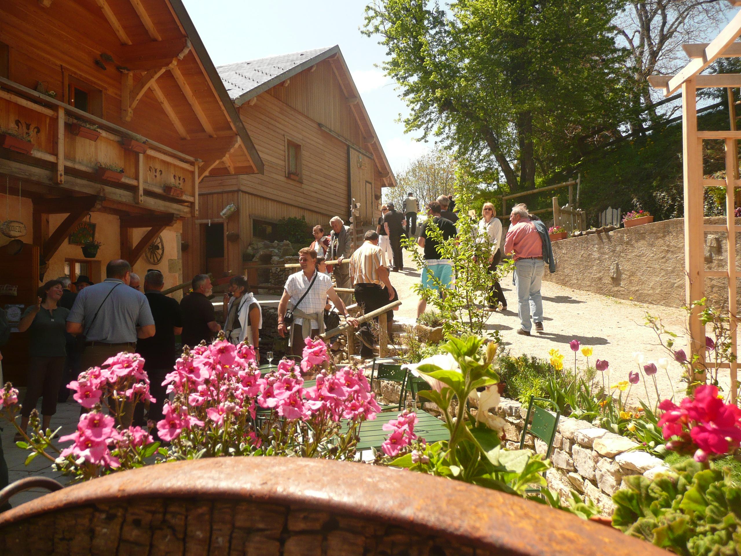 Apprendre à fabriquer du sirop naturel en Haute-Savoie
