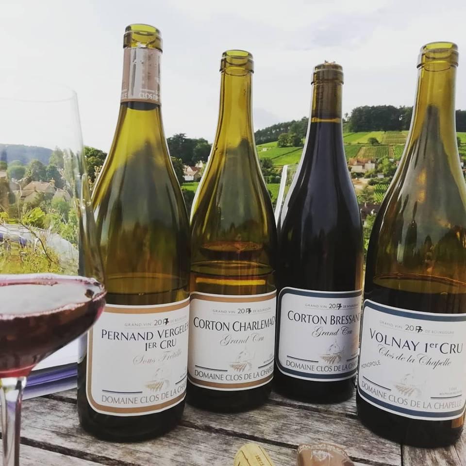 Initiation à l'art de la dégustation du vin !