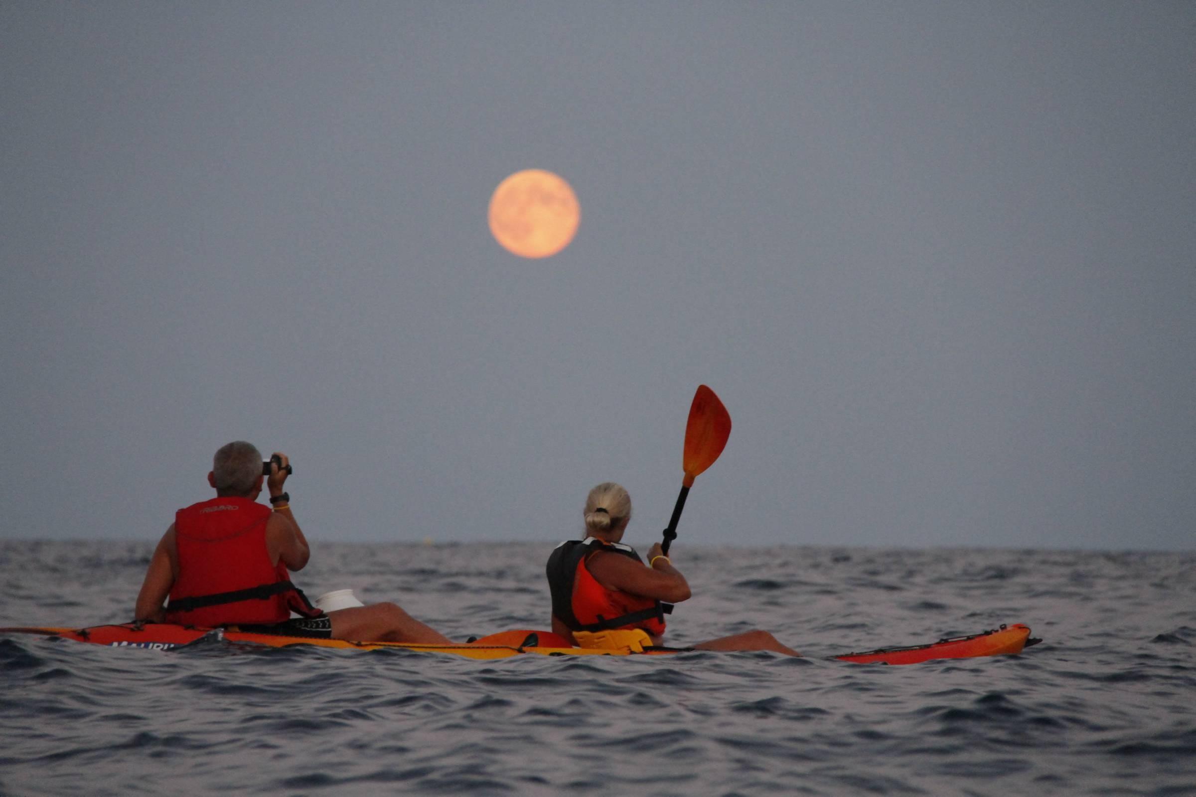 Découverte des 3 caps de la presqu'île de Saint-Tropez en kayak de mer