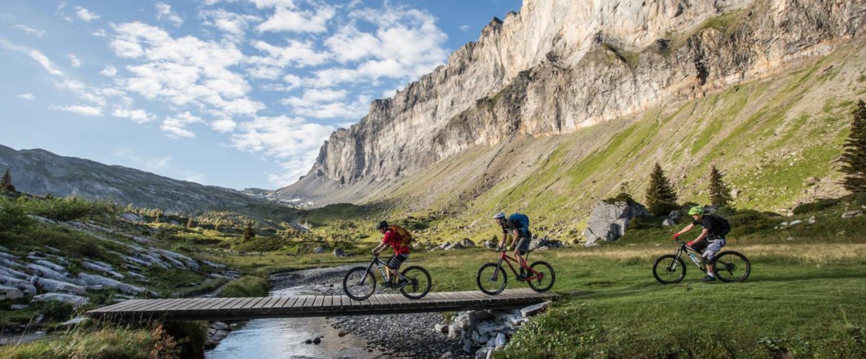 VTT Enduro en vallée de Chamonix avec guide privé