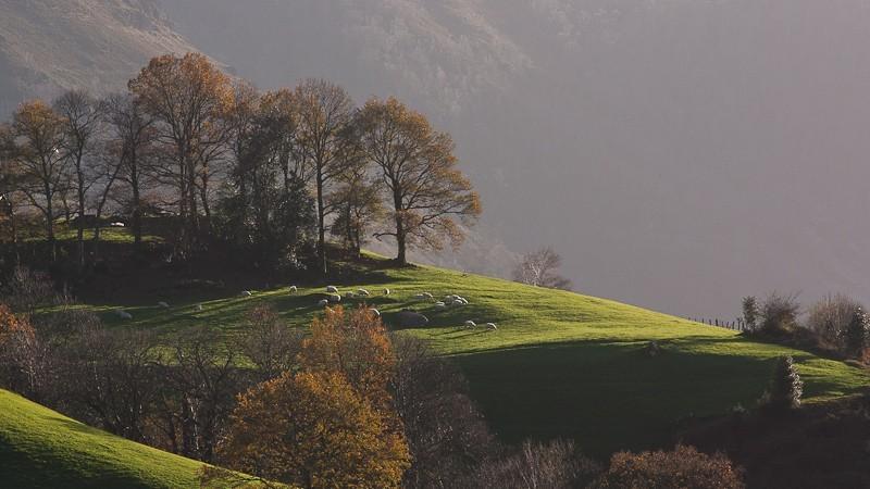 Journée photographie au cœur du Pays Basque