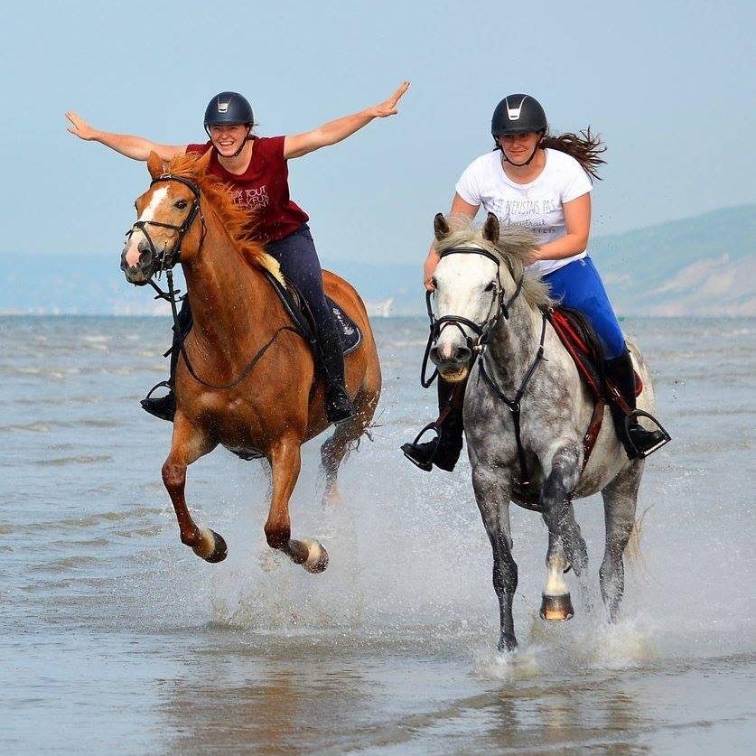 Promenade privée à cheval sur la plage de Cabourg
