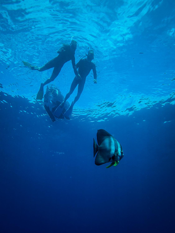 Séance de relaxation sous-marine