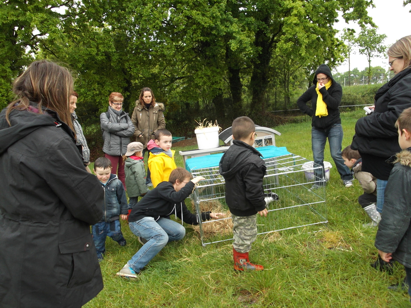 Visite à la ferme et dégustation de produits locaux en Bretagne