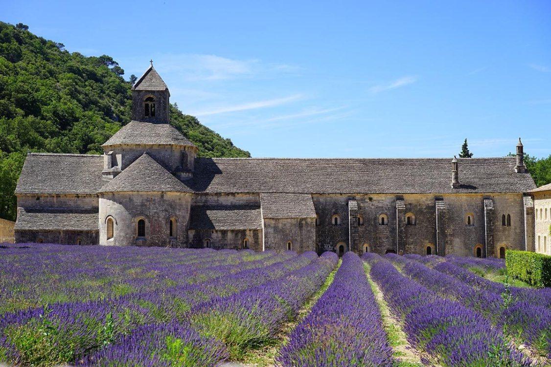 Dégustation des Grands Vins de Provence lors d'une excursion en mini-van