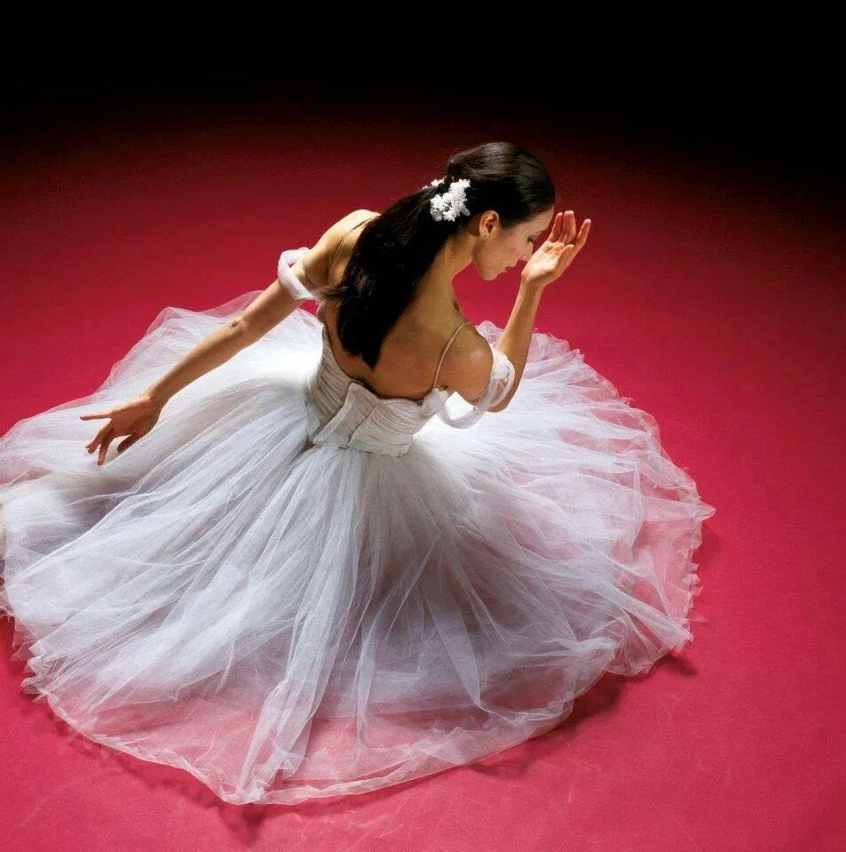 Cours de danse de Salon et bal des mariés spécial EVJF