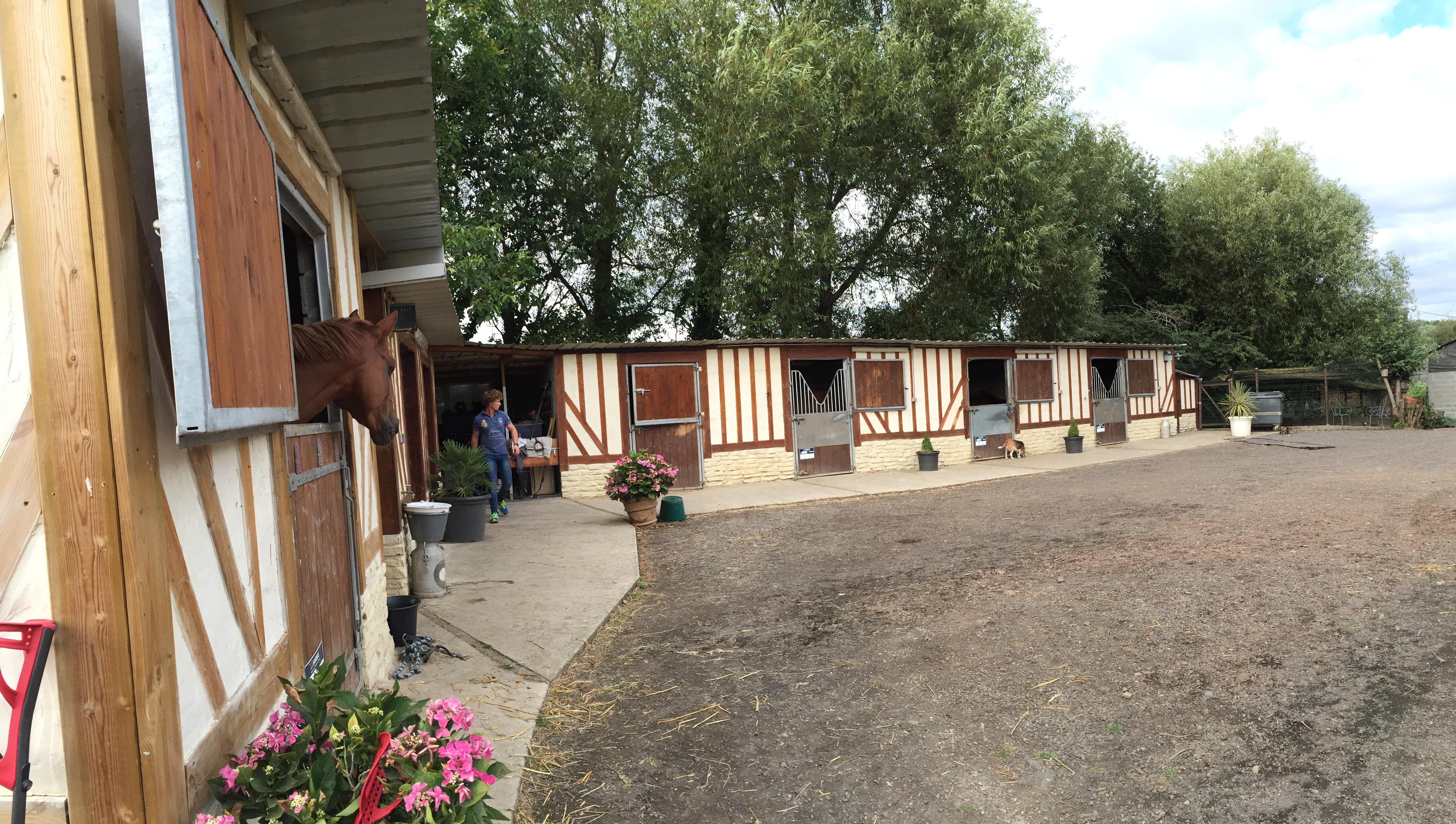 Cours d'équitation près de Caen