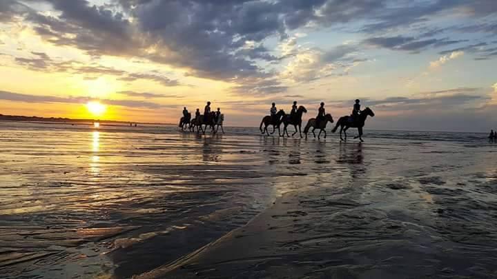Balade à cheval sur la plage de Ouistreham