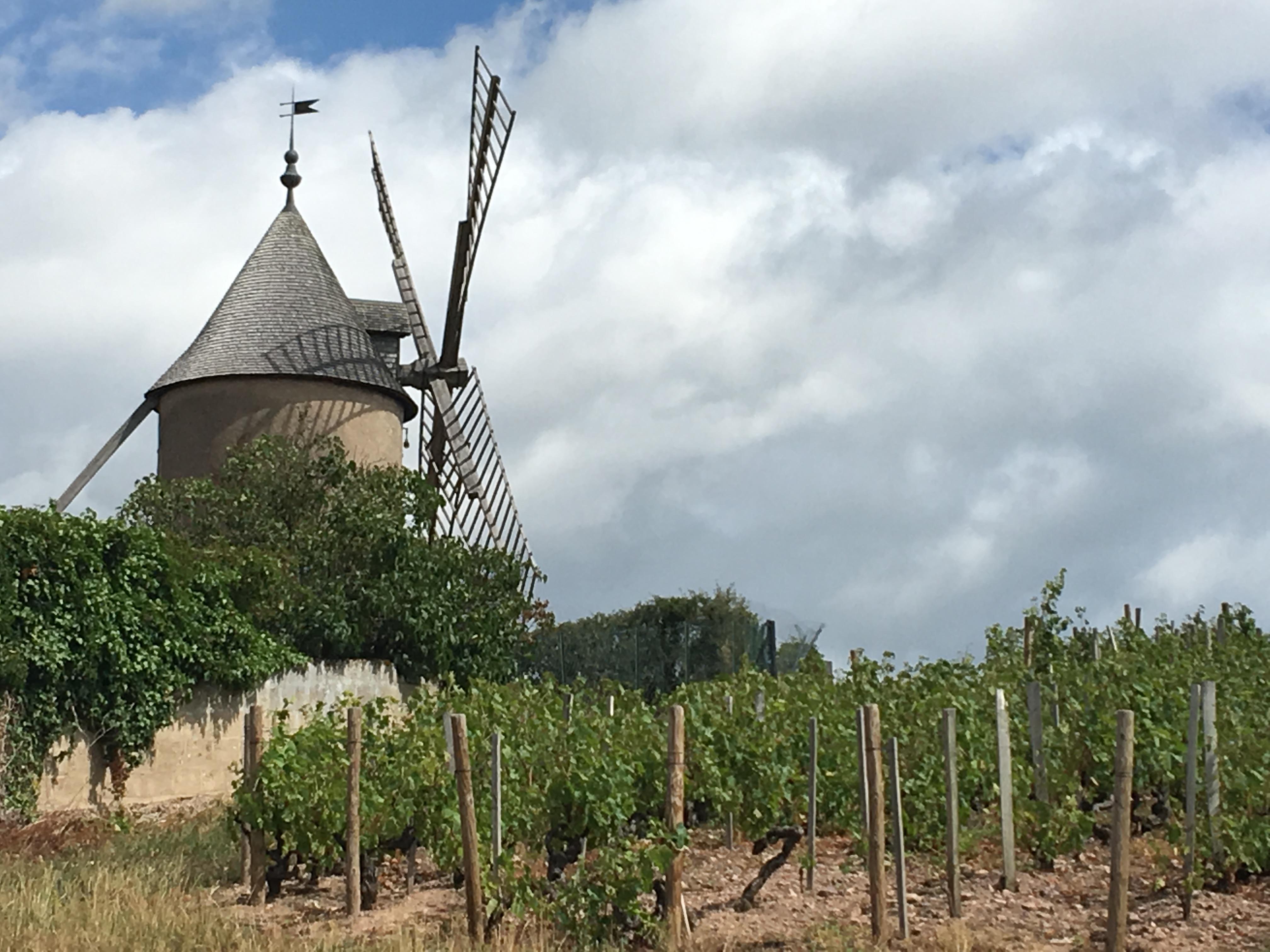 Partage autour du Beaujolais Crus