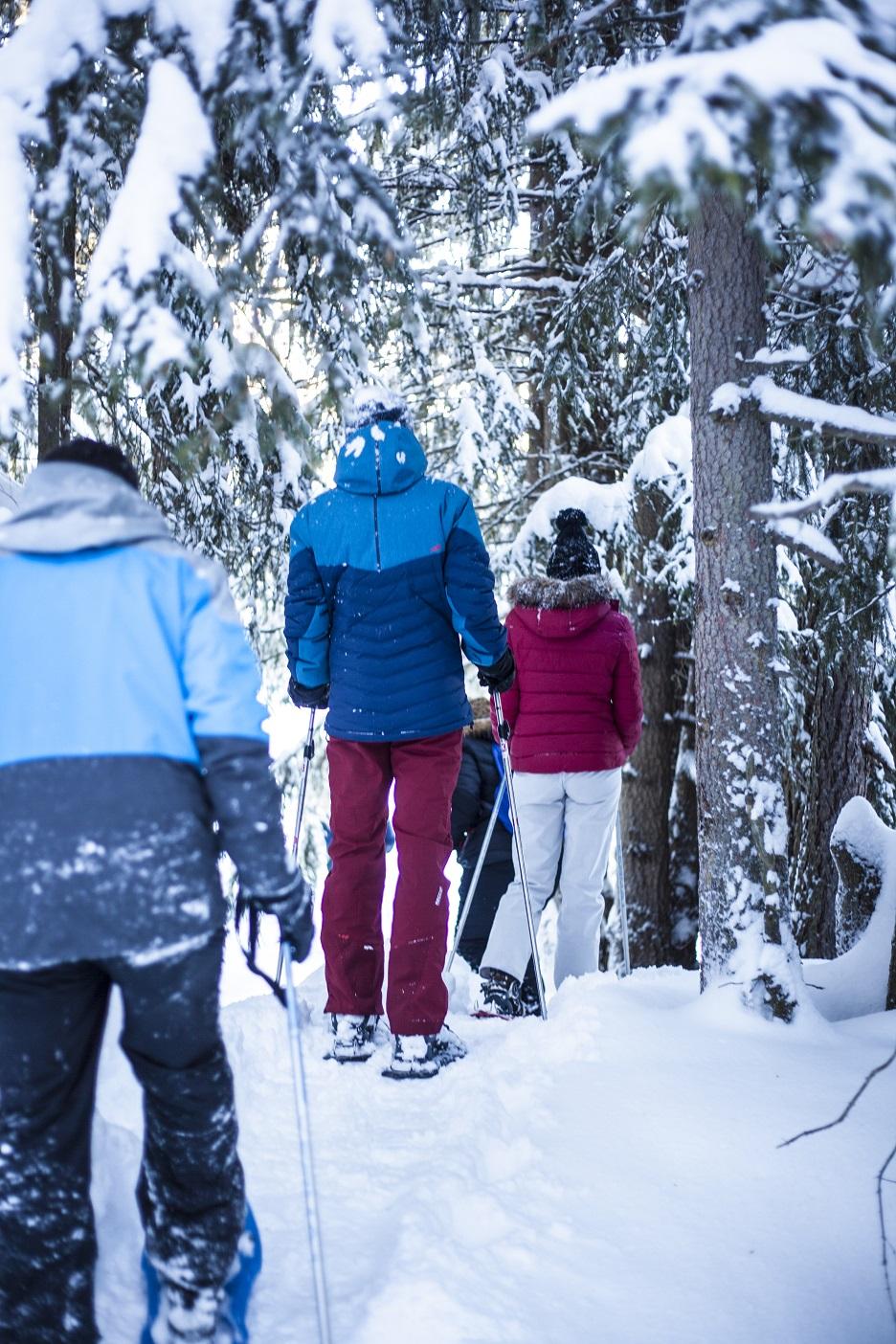 Balade en raquette à neige à la Plagne