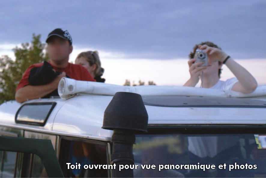 Excursion-découverte de la Camargue en 4x4 écotouristique au coucher du soleil !