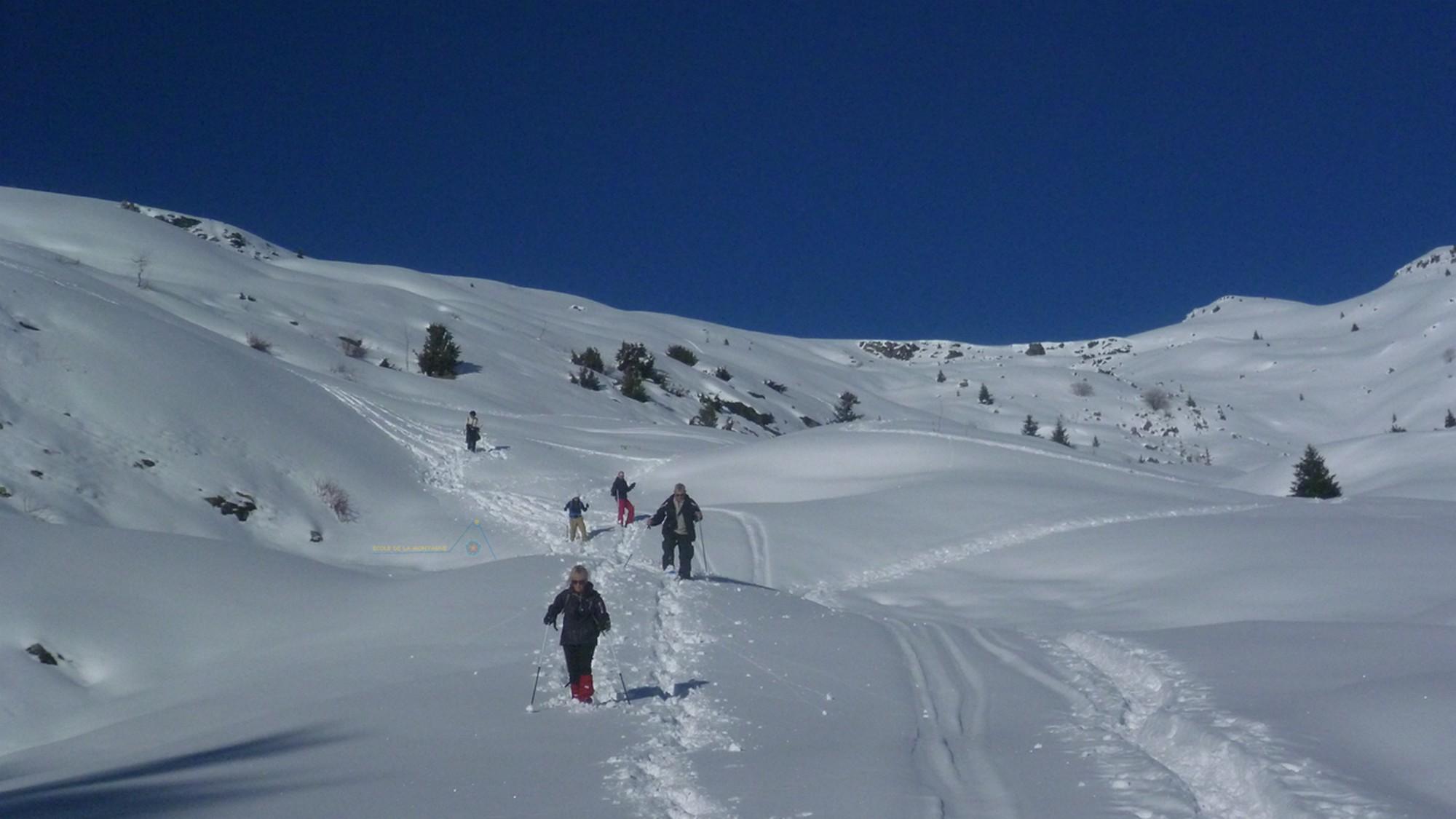 Balade & Remise en forme en raquettes dans les Alpes
