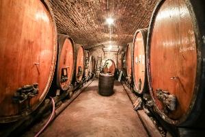 Découverte des vins d'Alsace au coeur d'une cave historique de 1728