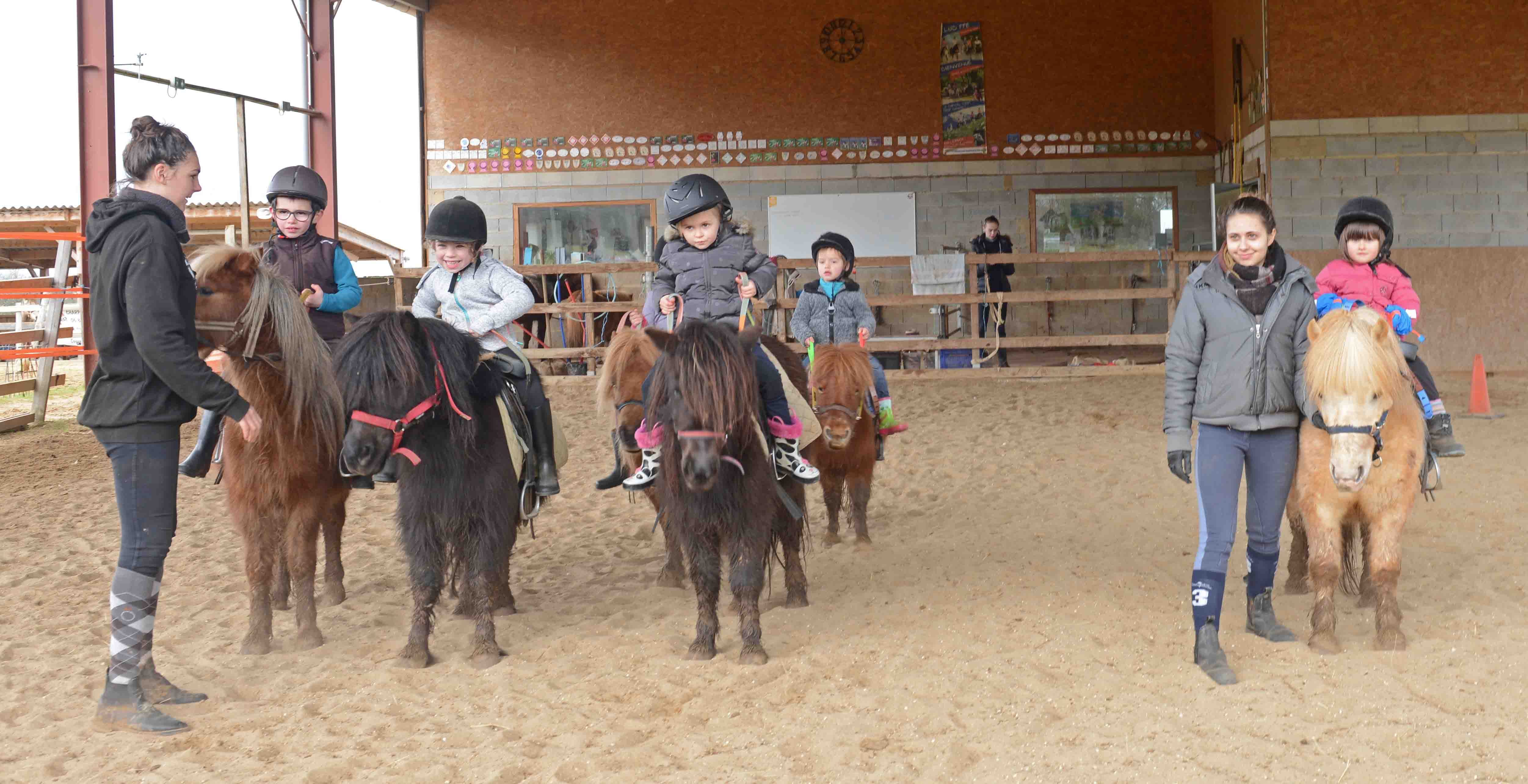 Stage découverte cheval