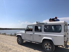 Safari 4x4  en Camargue
