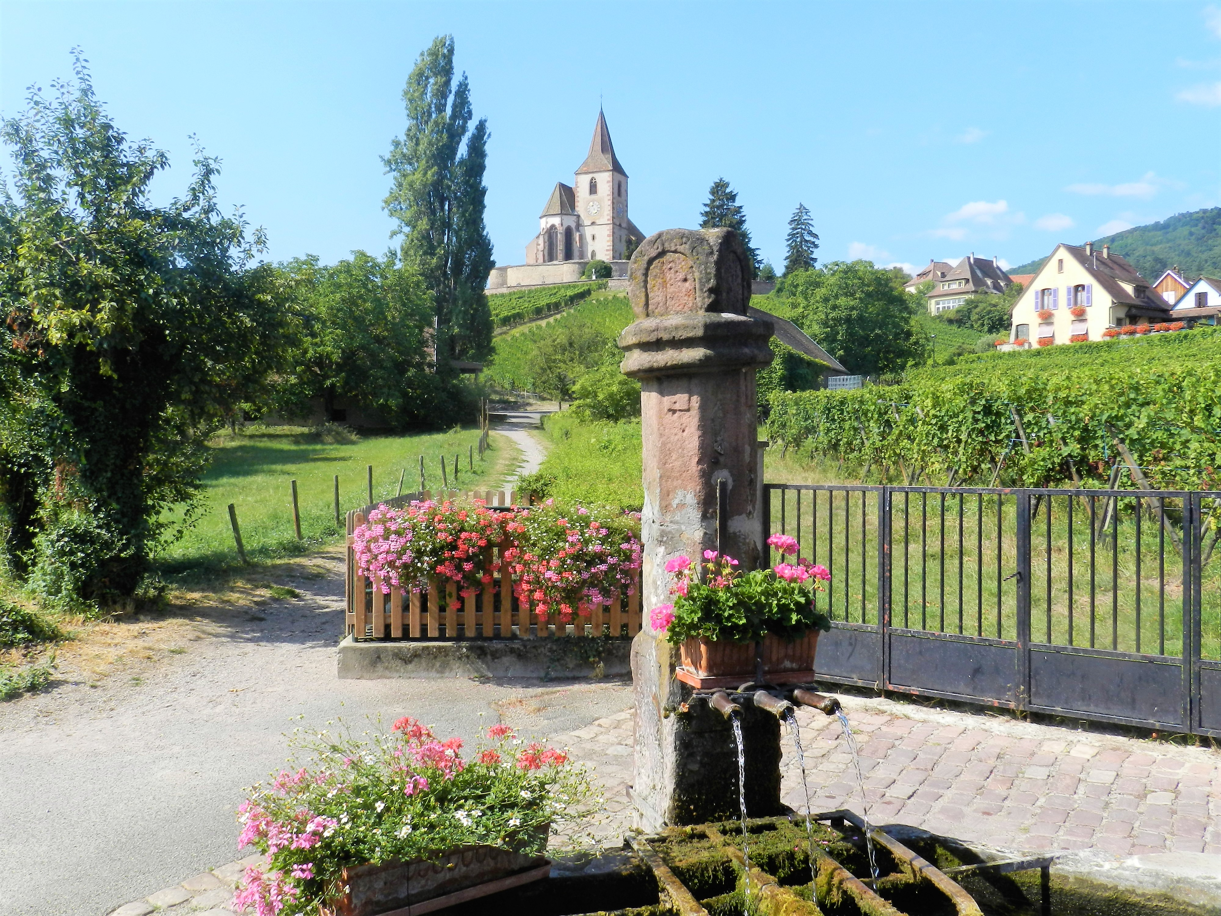 Tour Les Emblématiques : 1/2 journée matin, visite de villages & route vins