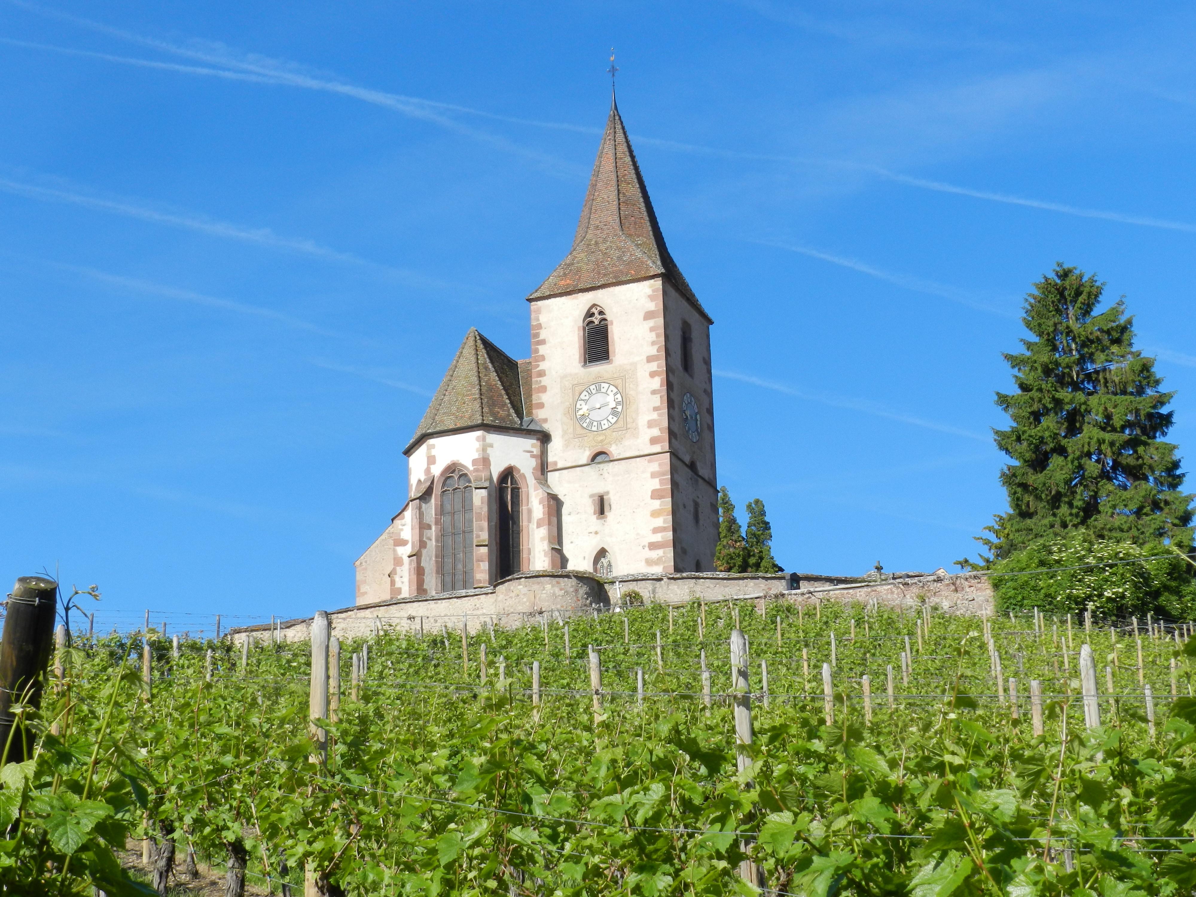 Tour Les Emblématiques : Après-midi, visite de villages & route vins & Dégustation