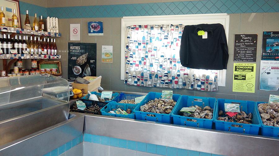 Visite et dégustation de fruits de mer à Talmont-Saint-Hilaire
