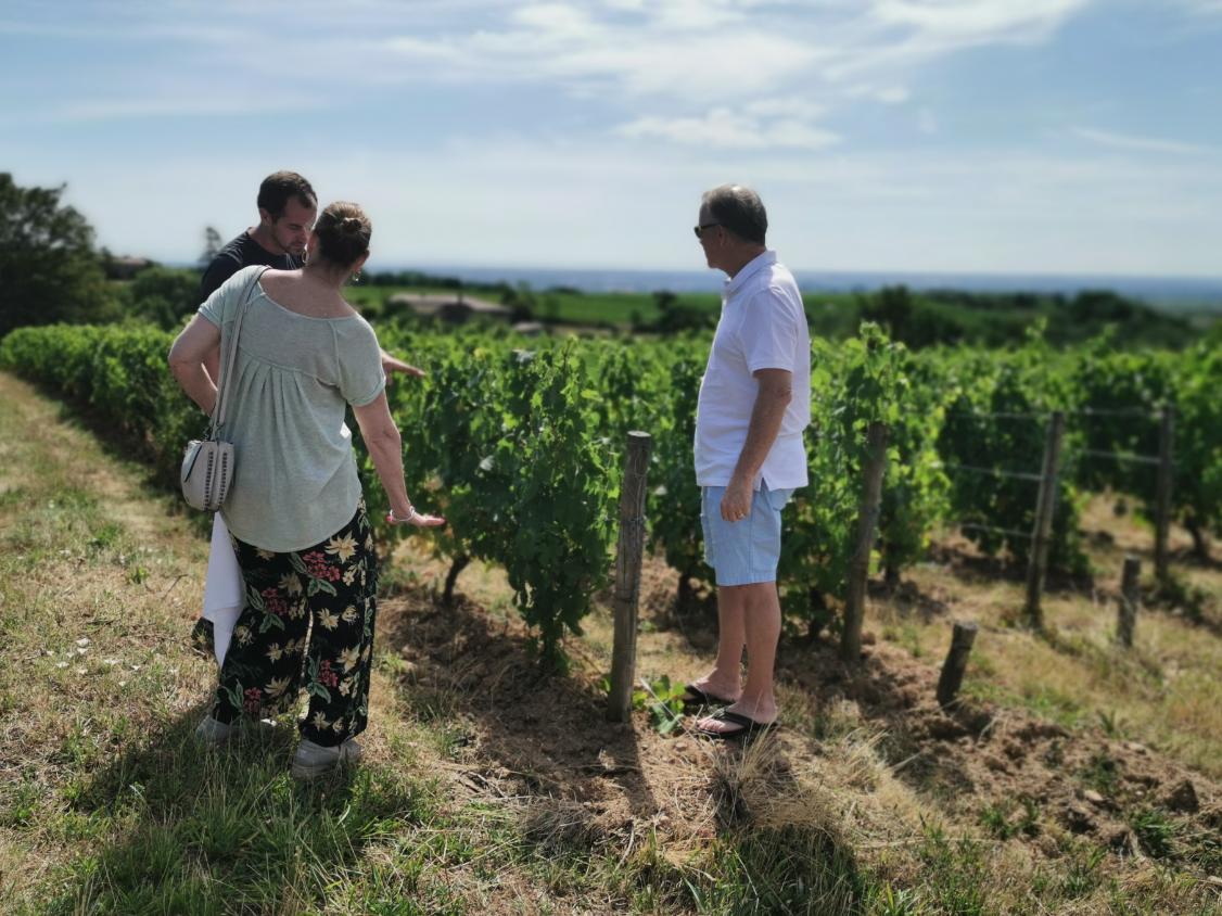 Excursion au cœur du Beaujolais