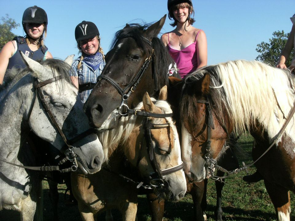 Cours d'équitation thématique à la journée en Bourgogne