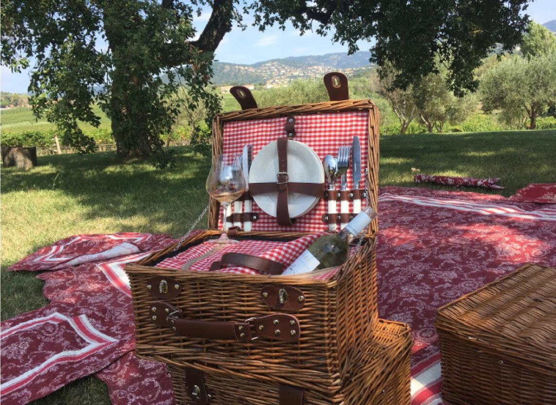 Balade et pique-nique au milieu des vignes proche de Hyeres