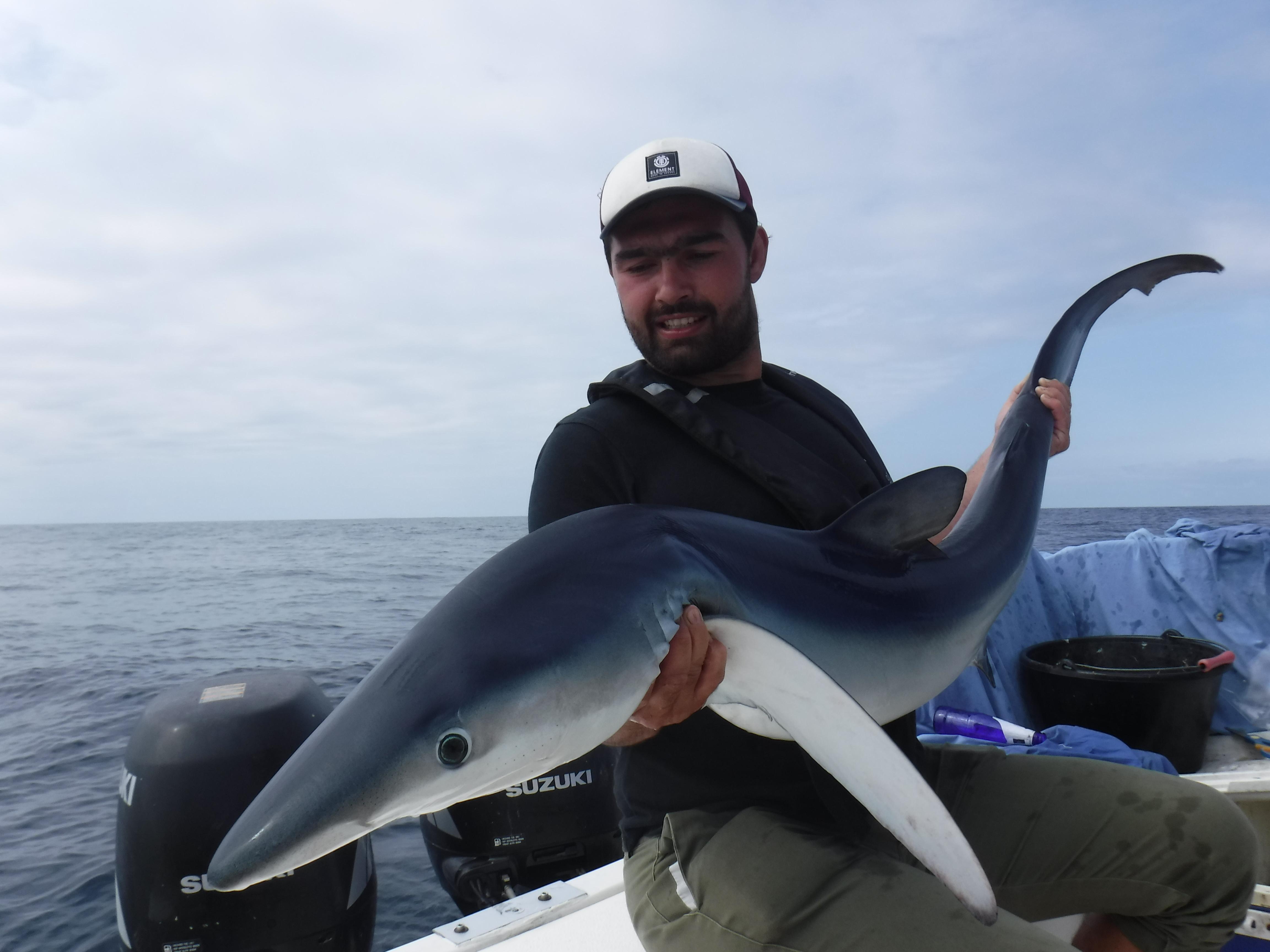 Pêche du requin au large du Bassin d'Arcachon
