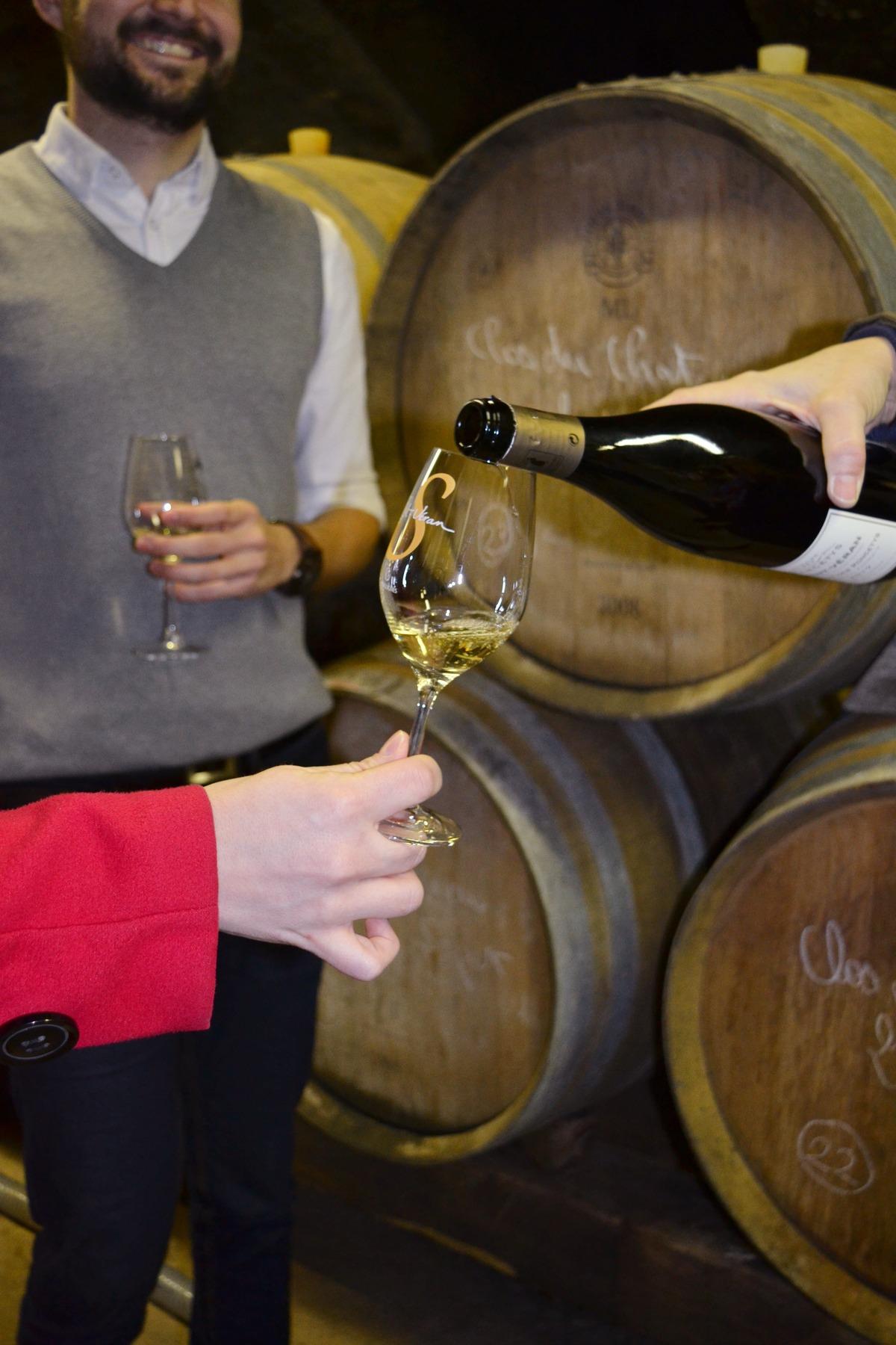 Découvrez le berceau du Chardonnay en Bourgogne