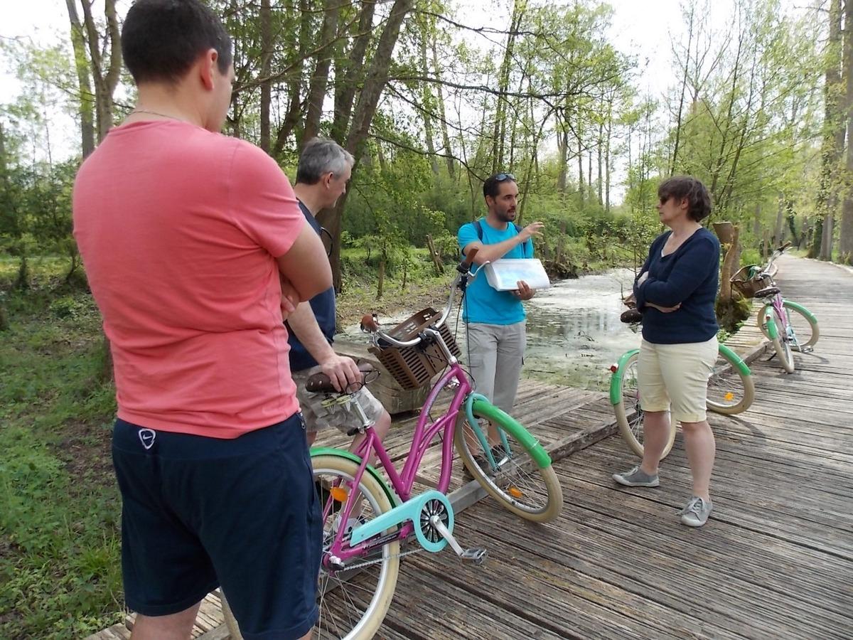 Expédition vélo au coeur de la Venise Verte