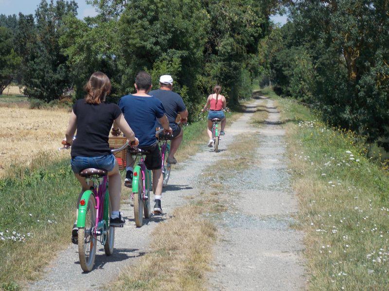 Une promenade vélo au goût de bière du Marais Poitevin