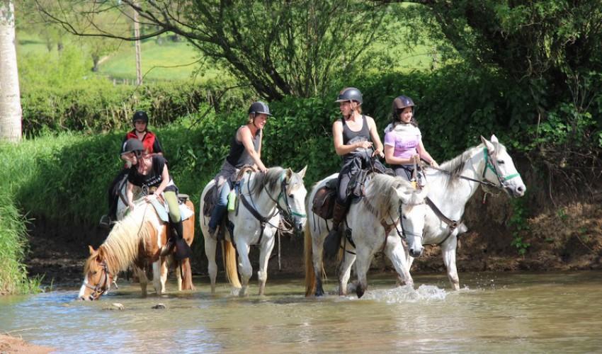 Promenade à cheval en campagne charolaise