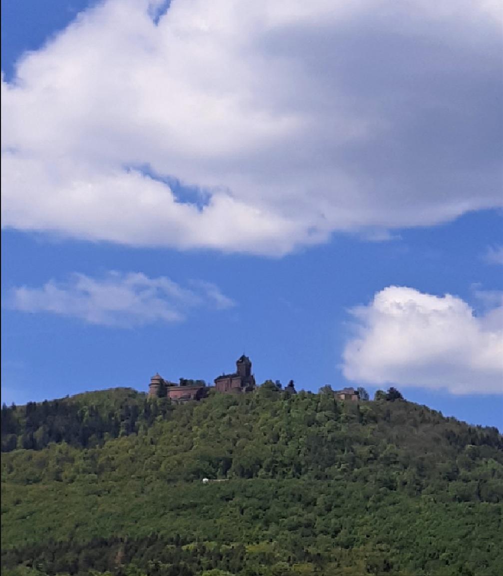 Château et Vignoble, un après-midi sur la route des vins