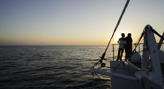 Balade en bateau et Cocktail coucher de soleil