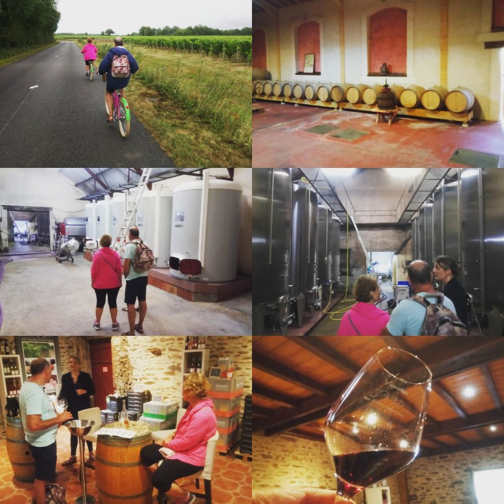 Balade à vélo dans les vignes de Rosnay