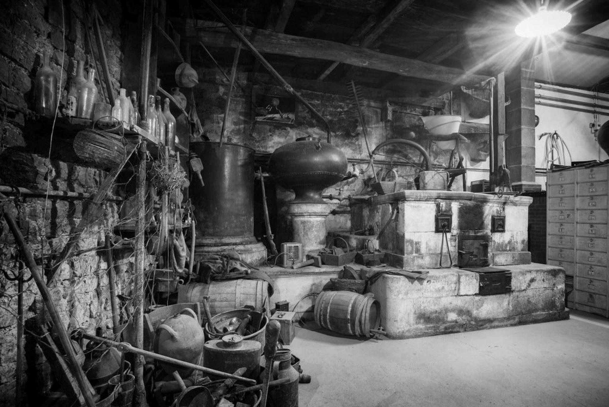 Visite privilège de notre production et dégustation privée de tous nos cognacs