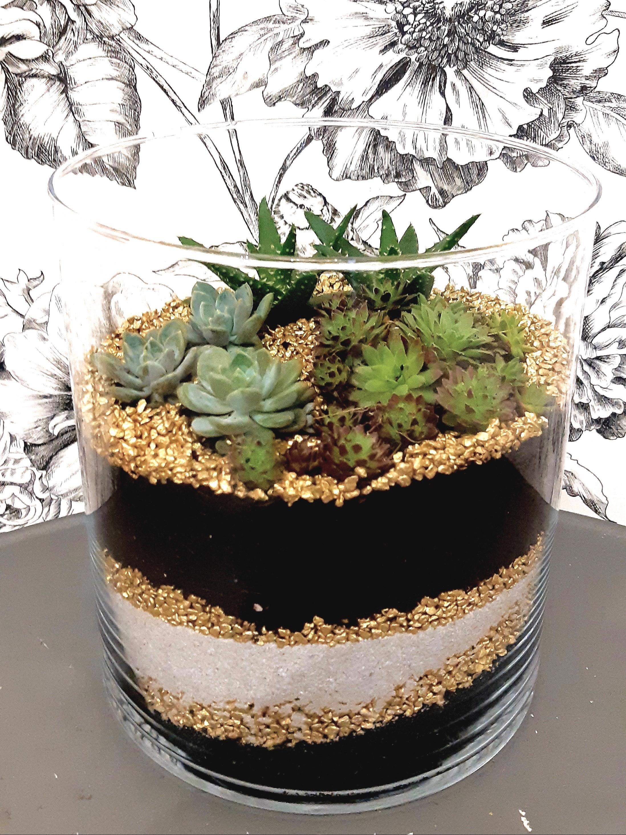 Réalisation d'un terrarium sec